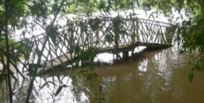 N° 133-2 Inondation.jpg
